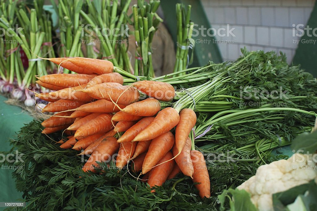Fresh organic carrots royalty-free stock photo