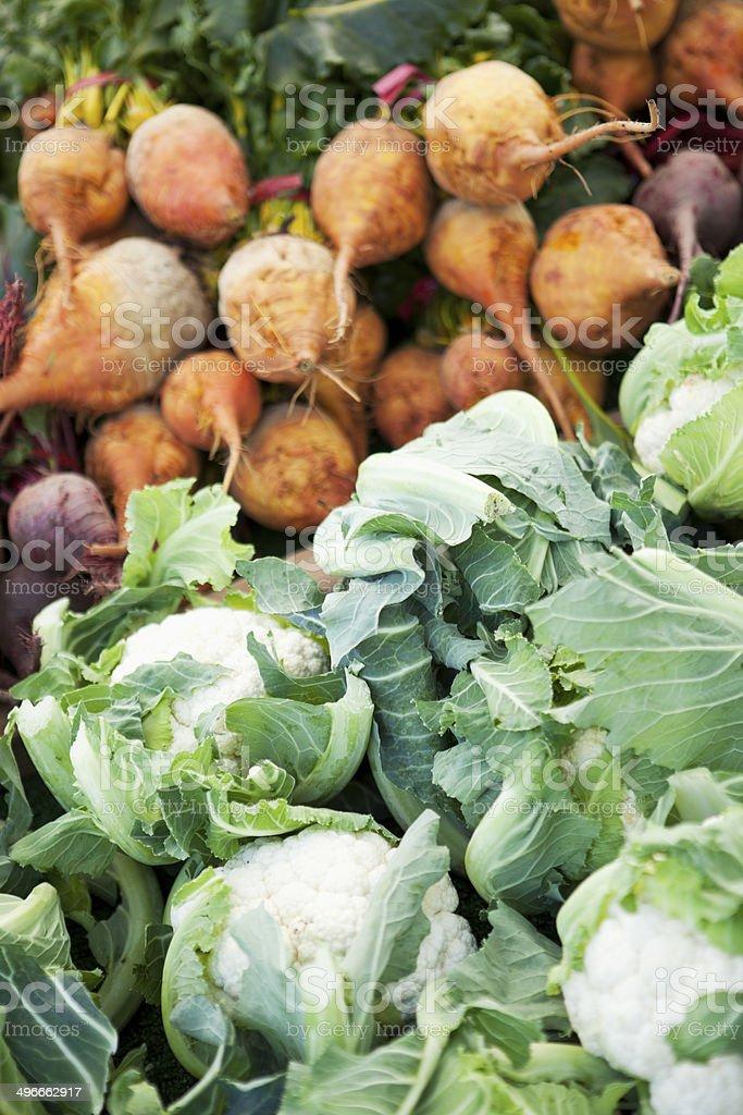 fresh organic cauliflower and golden beets stock photo
