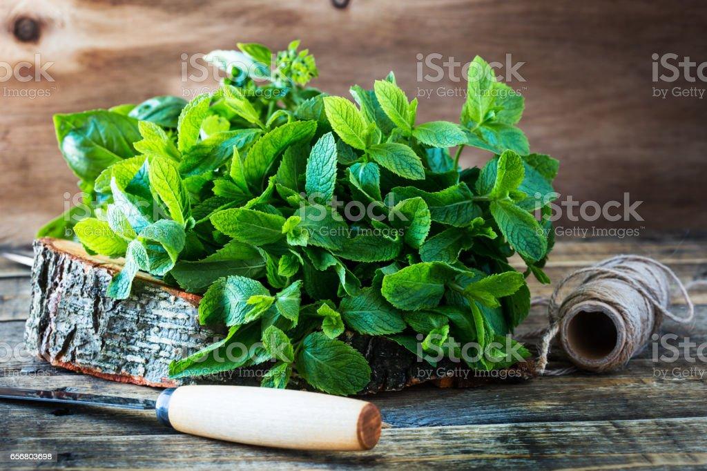 Fresh organic  green mint leaves on rustic wood plank stock photo