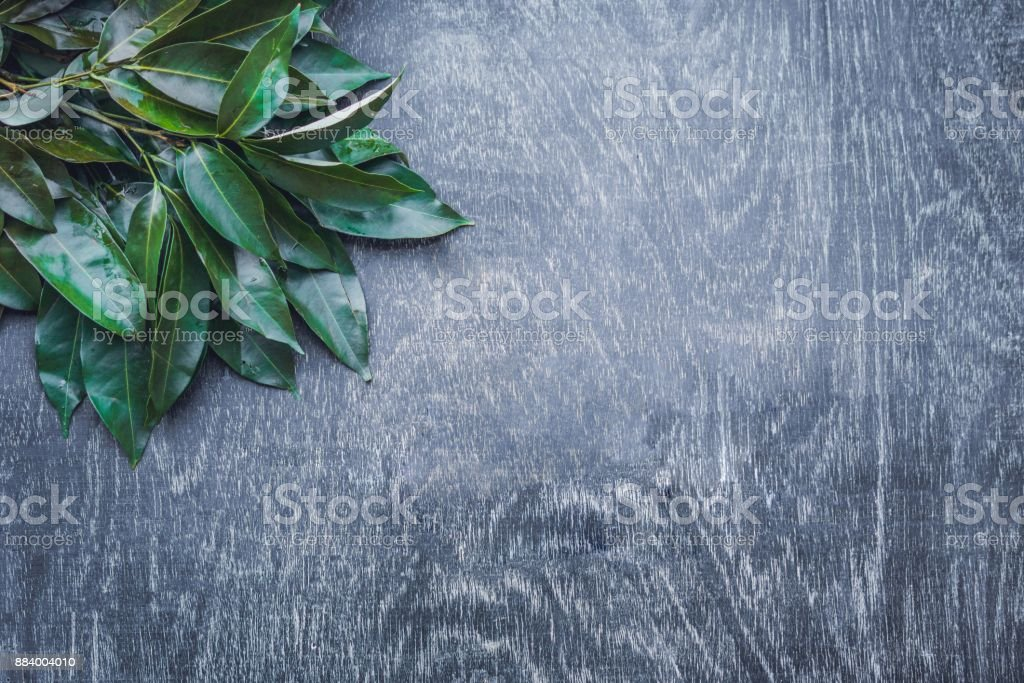 Fresh organic lychee leaves on a rustic wooden background stock photo