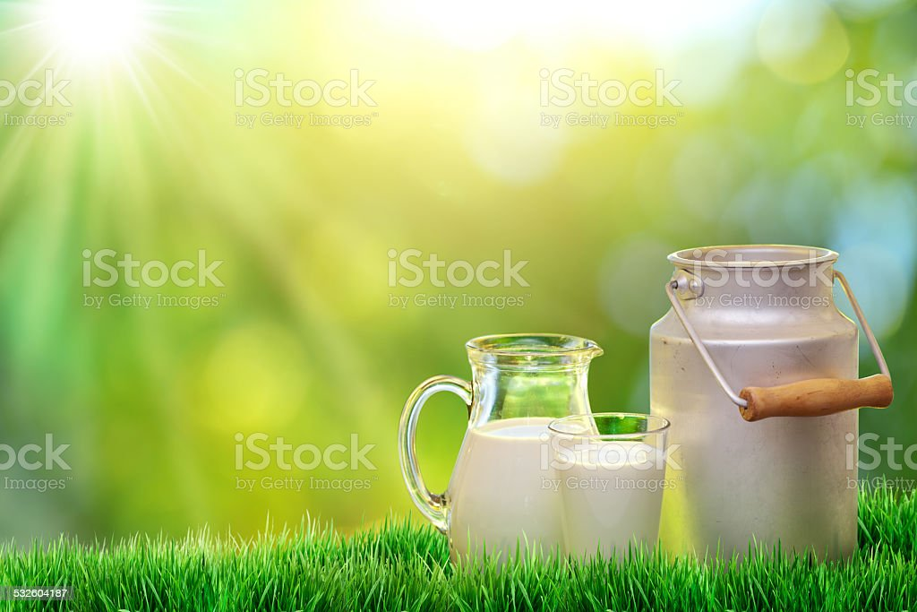 Fresh organic milk. stock photo