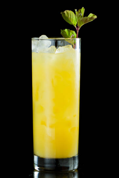 fresh organic orange juice fresh organic orange juice and vodka in a tall glass isolated on a black background garnished with fresh green mint screwdriver drink stock pictures, royalty-free photos & images