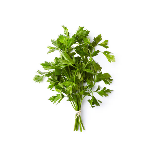 fresh organic parsley  on white background; flat lay - parsley stock photos and pictures