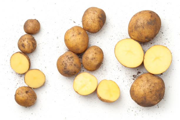 fresh organic potatoes isolated on white background - batata crua imagens e fotografias de stock