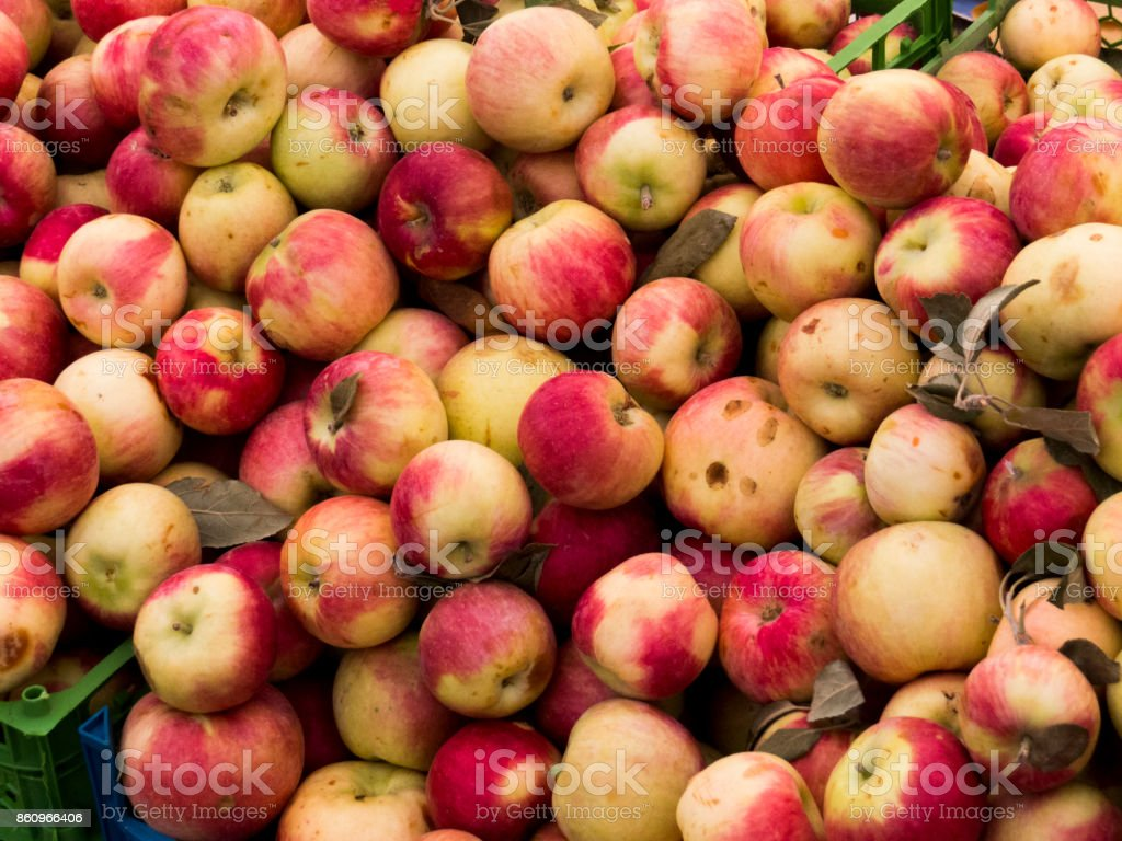 Fresh Organic Red Apples in Local Market stock photo