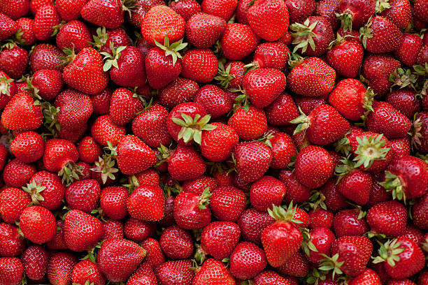 fresh organic strawberries - aardbei stockfoto's en -beelden
