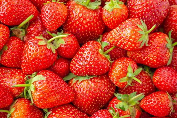 Frische Bio-Erdbeerobst Hintergrund Top Ansicht aus der Nähe – Foto