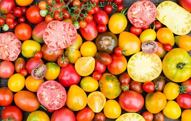 Fresh Organic Tomatoes. Colorful Tomatoes Background. – Foto