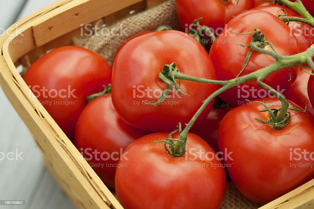 Fresh organic tomatoes in wood basket royalty-free stock photo