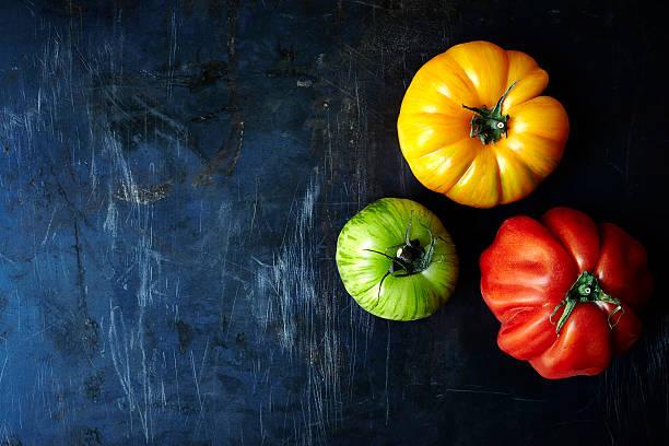 Frische Bio-Tomaten – Foto