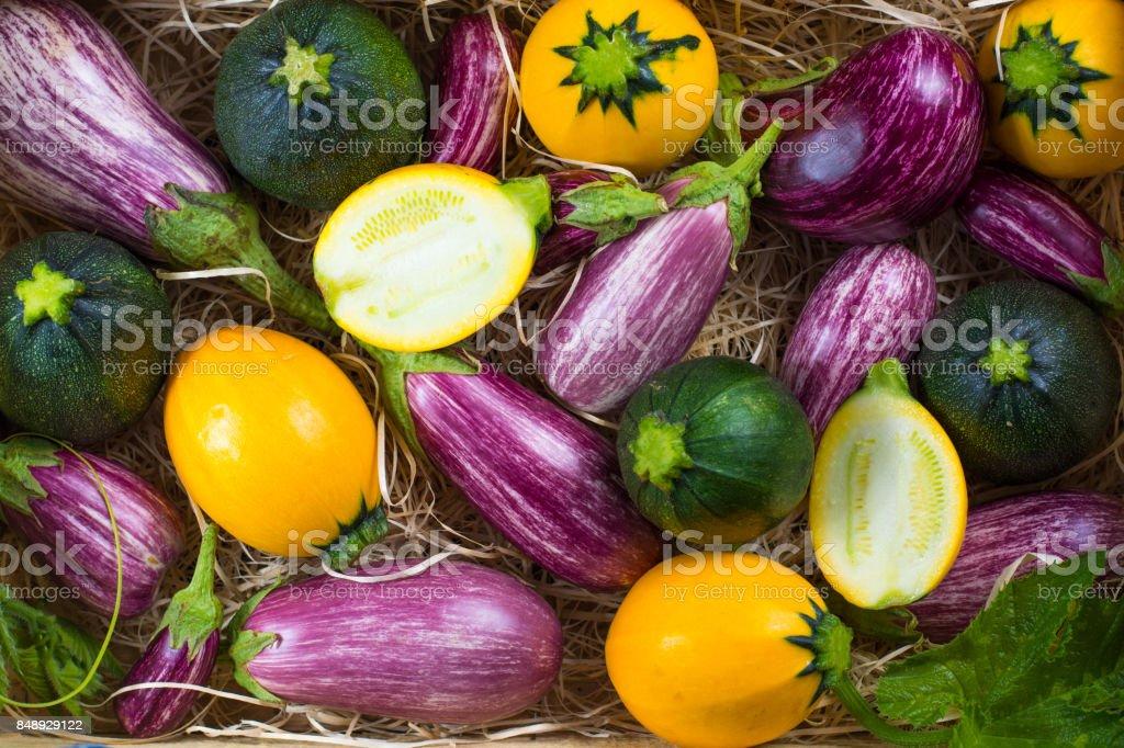 Fresh Organic Vegetables Background Wallpaper Round