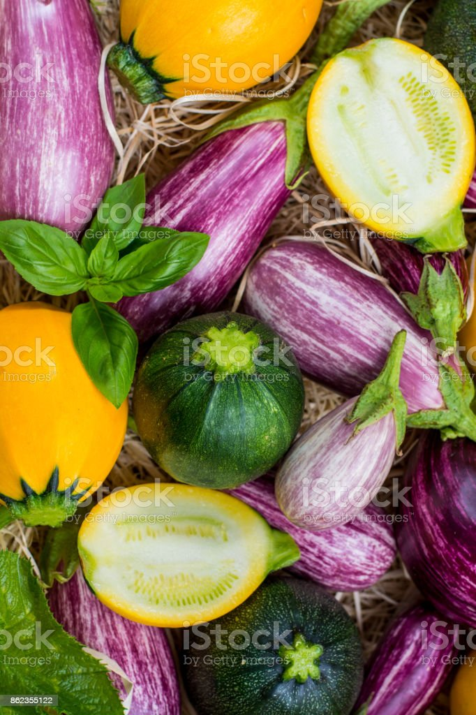 Fresh Organic Vegetables Background Wallpaper Round Courgette Small Eggplants Diet Concept Italian And French Food Healthy Food Stock Photo Download Image Now Istock