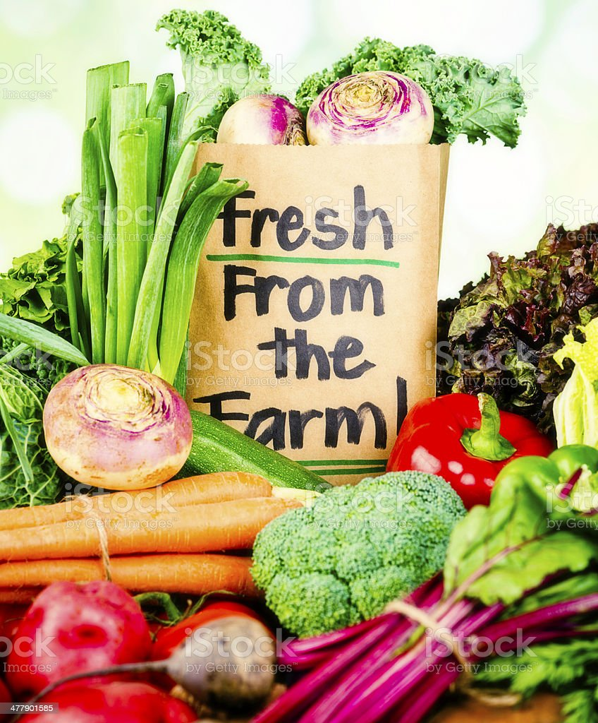 Fresh Organic Vegetables From the Farm royalty-free stock photo