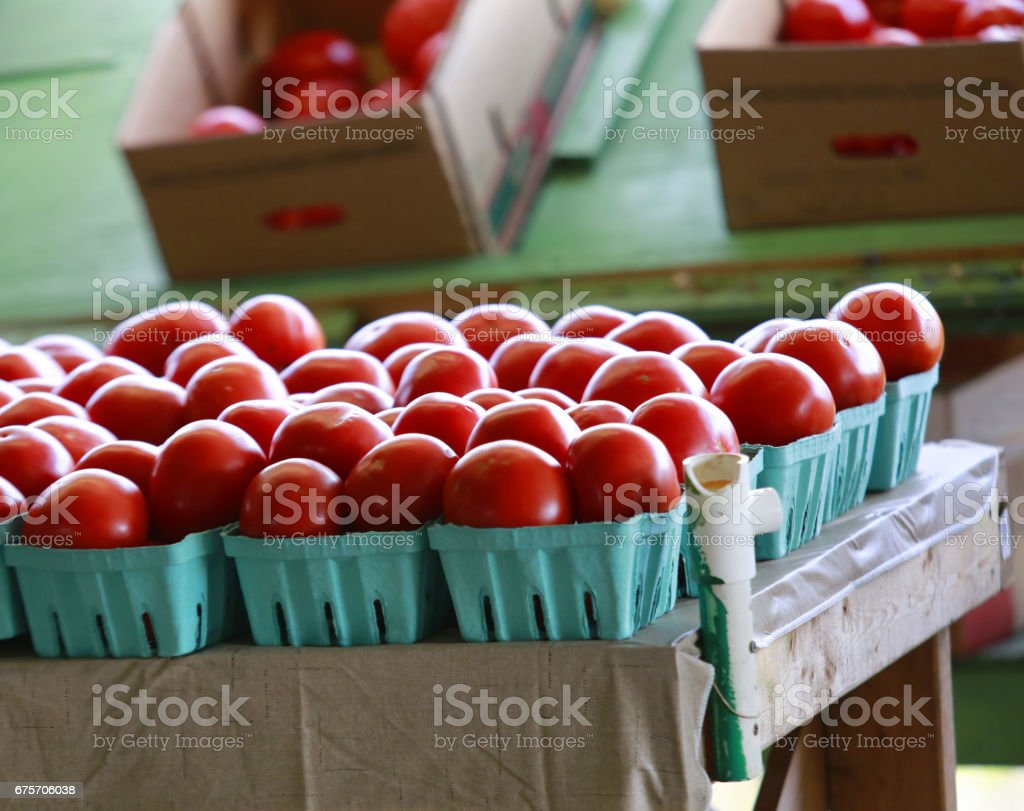 Fresh, organic,hand picked tomatoes in the produce market 免版稅 stock photo
