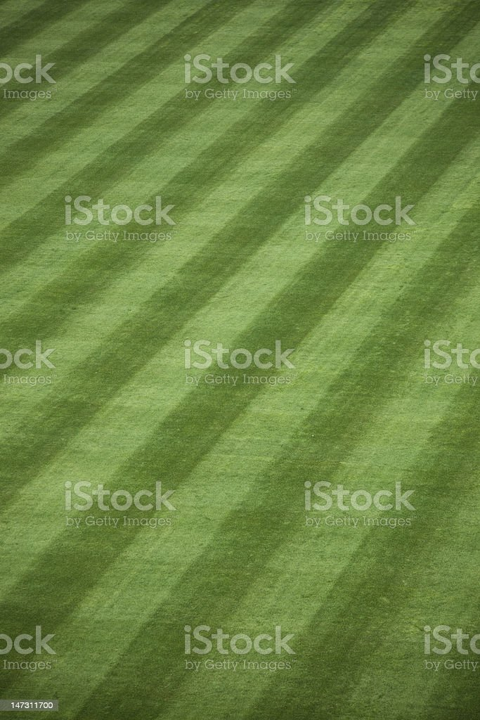 Fresh Outfield Grass royalty-free stock photo