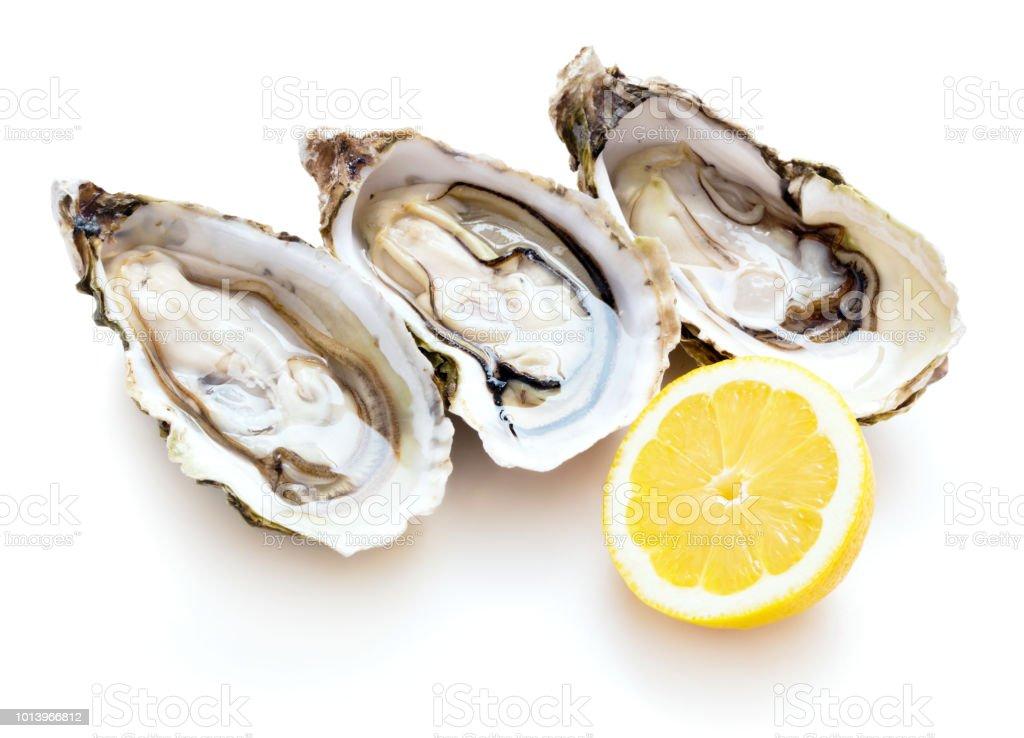 huîtres fraîches isolé - Photo