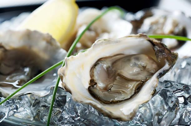 Frische Austern-Platte – Foto