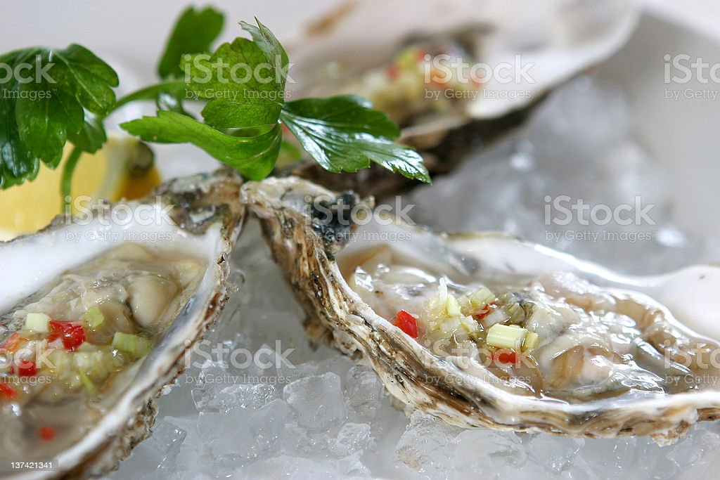Fresh Oysters in the shell royalty-free stock photo