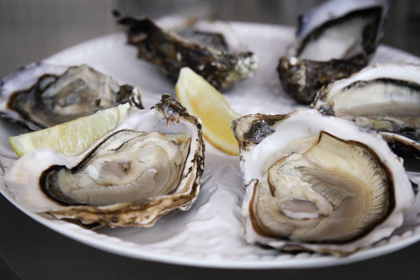 Fresh oysters on a plate stock photo