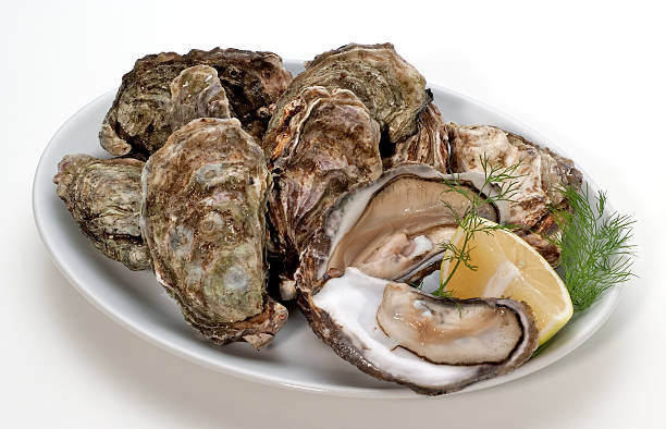 Fresh oysters(+clipping path)