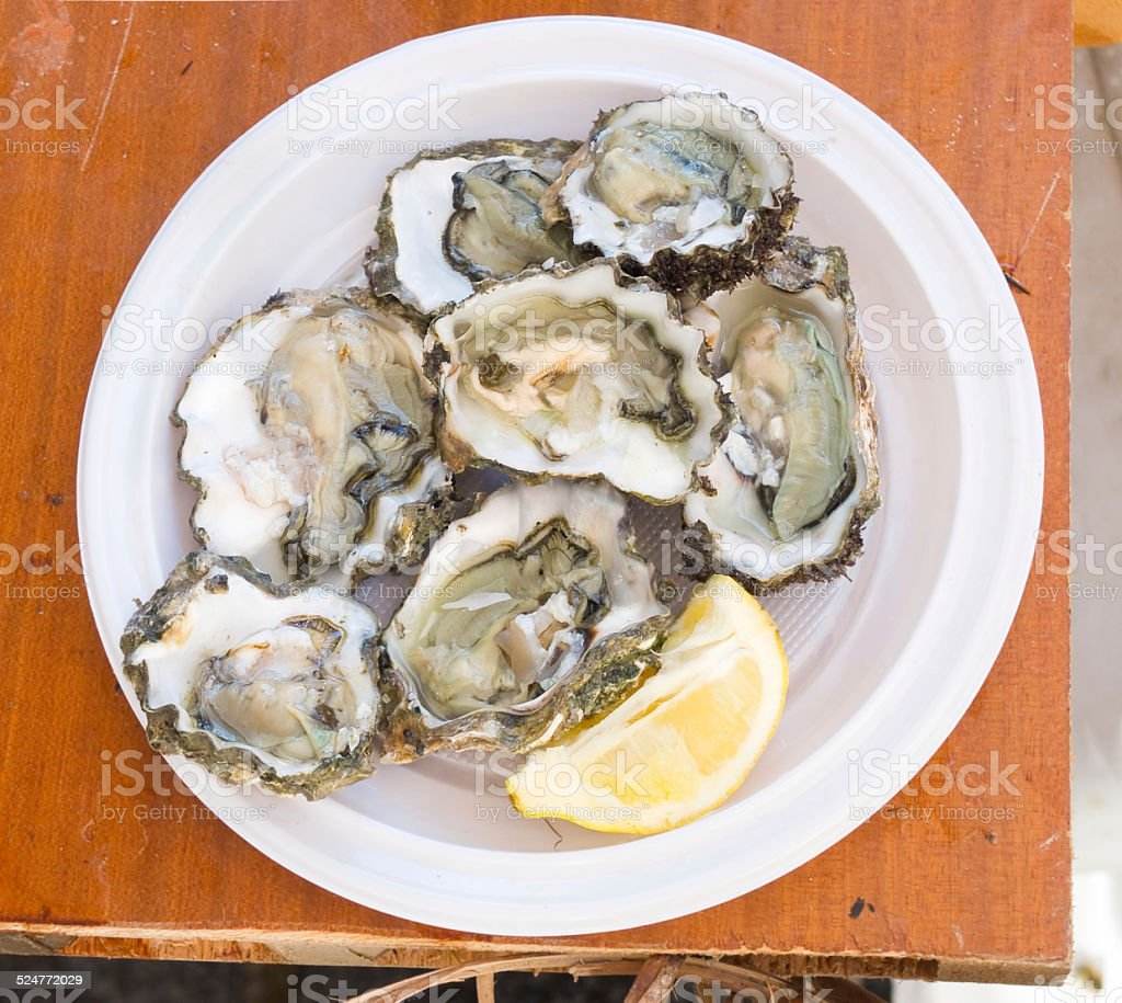 Fresh oysters. stock photo