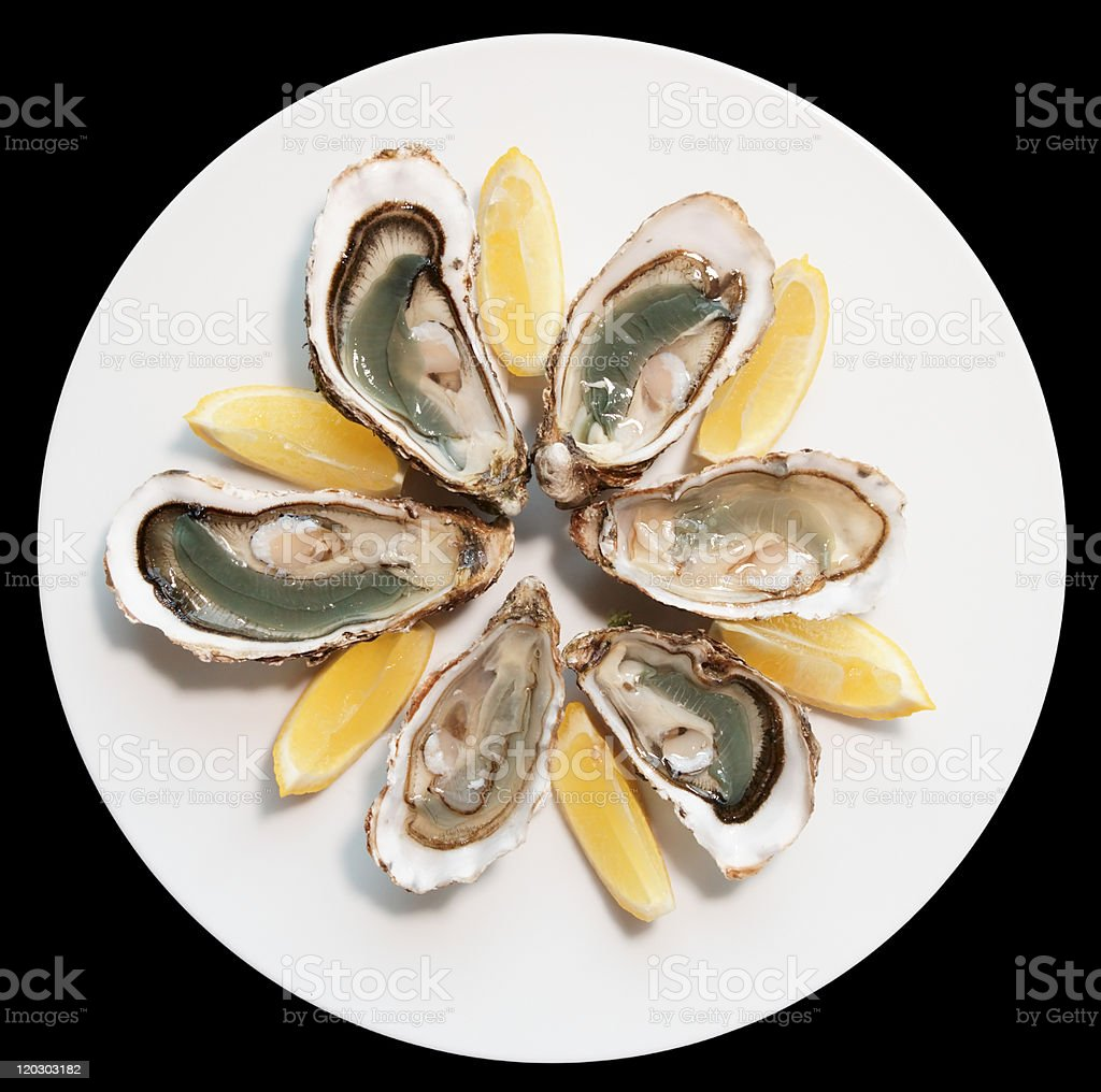 Fresh oysters plated with wedges of lemon stock photo