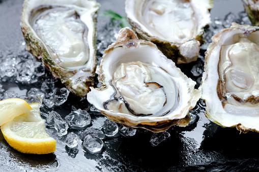 opened fresh oysters with ice and lemon slice on black slate background