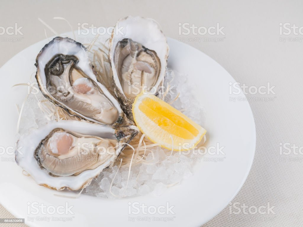 Fresh oysters with lemon on white plate in restaurant stock photo
