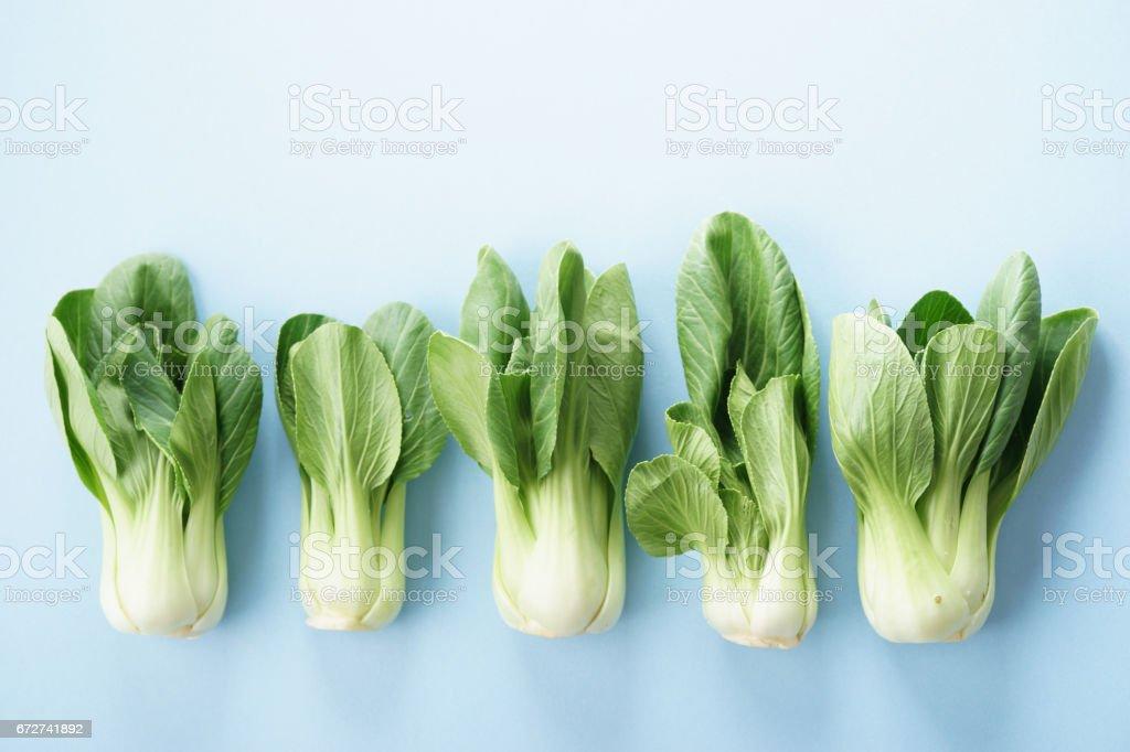 Fresh Pak choi, asian cabbage stock photo