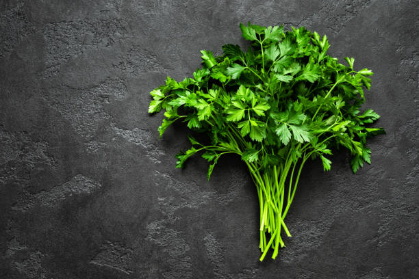 Fresh parsley bunch, top view stock photo