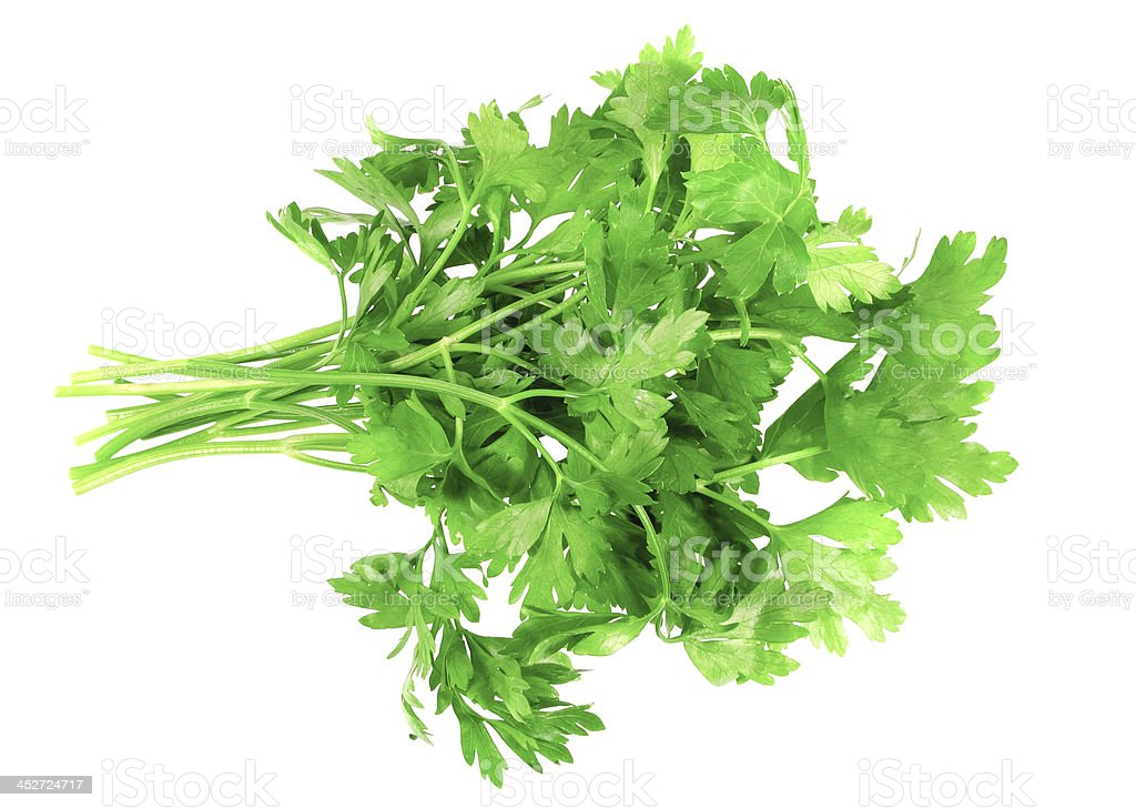 Fresh parsley on white background. Isolated royalty-free stock photo