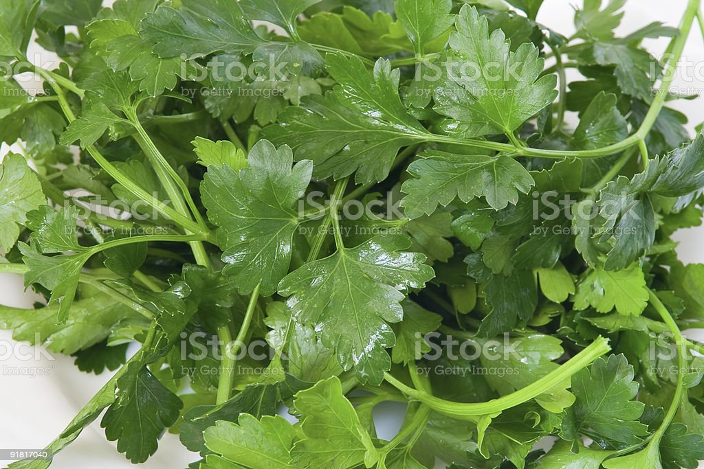 Fresh parsley royalty-free stock photo