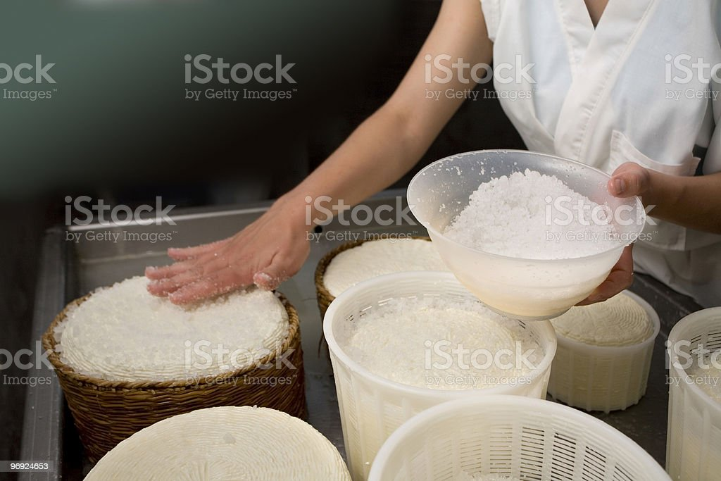 Fresh pecorino of Farindola royalty-free stock photo