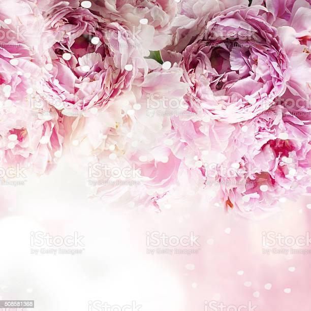 Fresh peony greeting card for mothers day 8 march valentintin picture id508581368?b=1&k=6&m=508581368&s=612x612&h=cnxux159rnlz3npr5ozufar9 panp5npej hmoqg4ai=