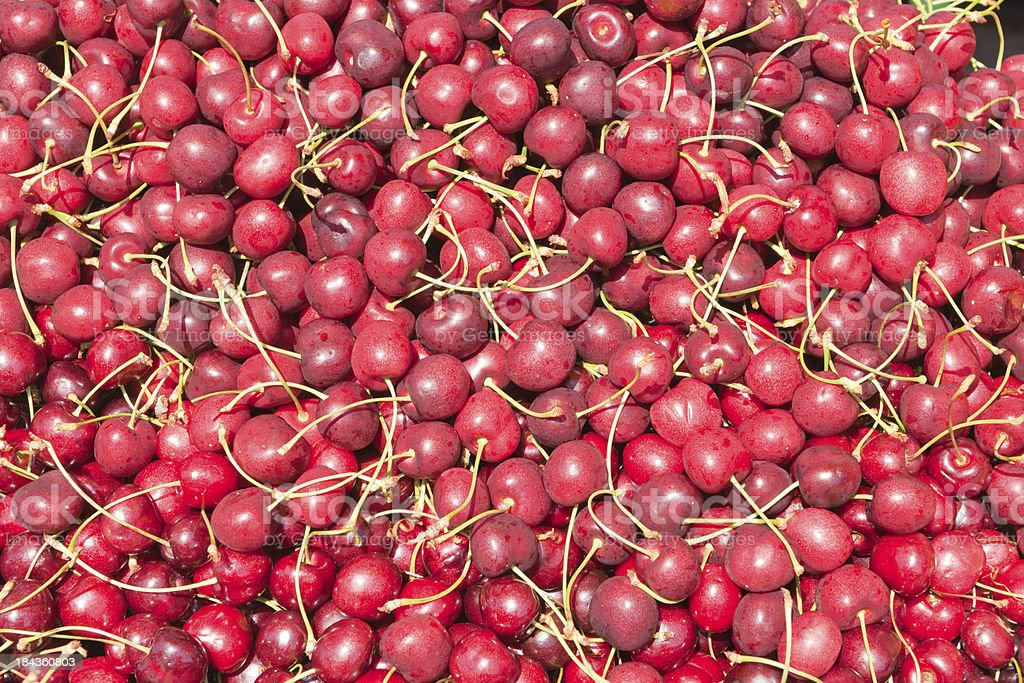 Fresh Picked Cherries (XXXL) royalty-free stock photo