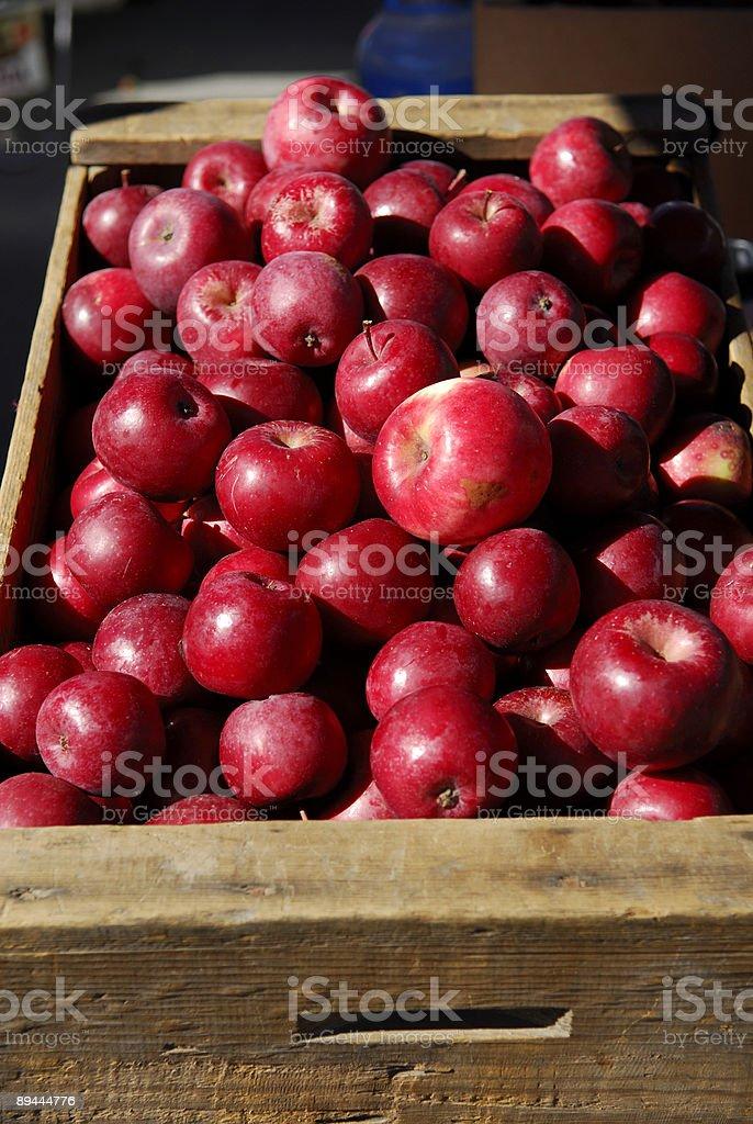 Pommes mûres fraîches dans une cage de transport photo libre de droits