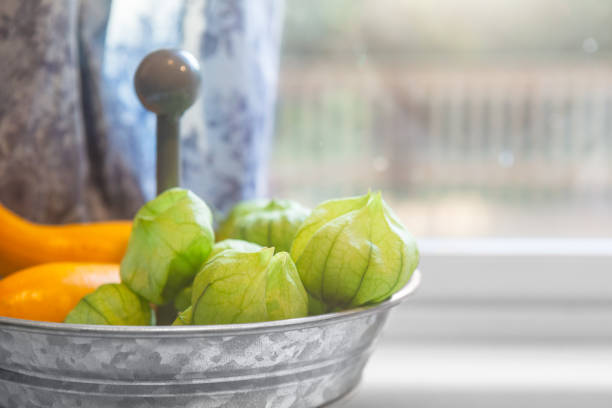 Fresh picked tomatillos and squash from a farmhouse garden by kitchen windowsill. Shallow depth of field. stock photo