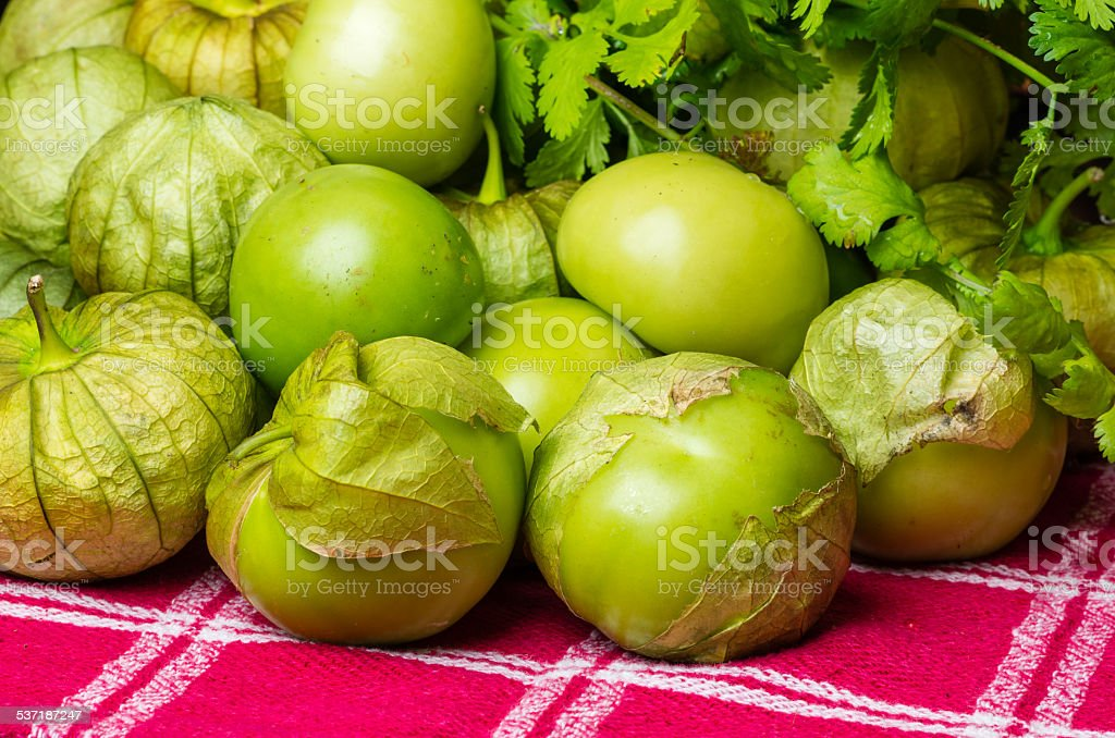 Fresh picked Tomatillos on display stock photo