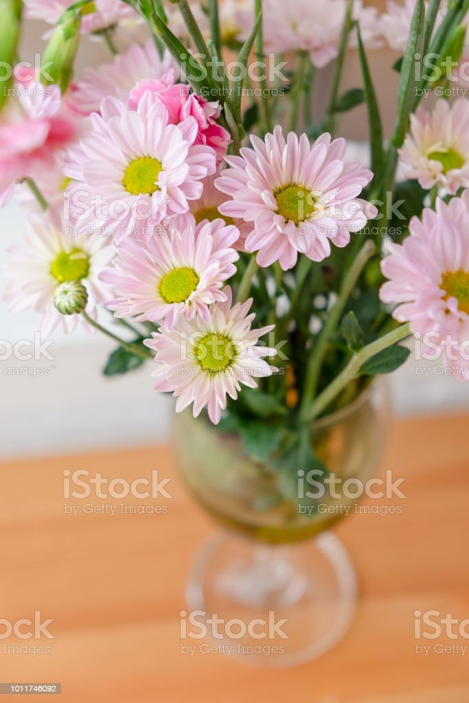 Fresh Pink Daisy Blossoming Flowers In Vase On Wooden Table