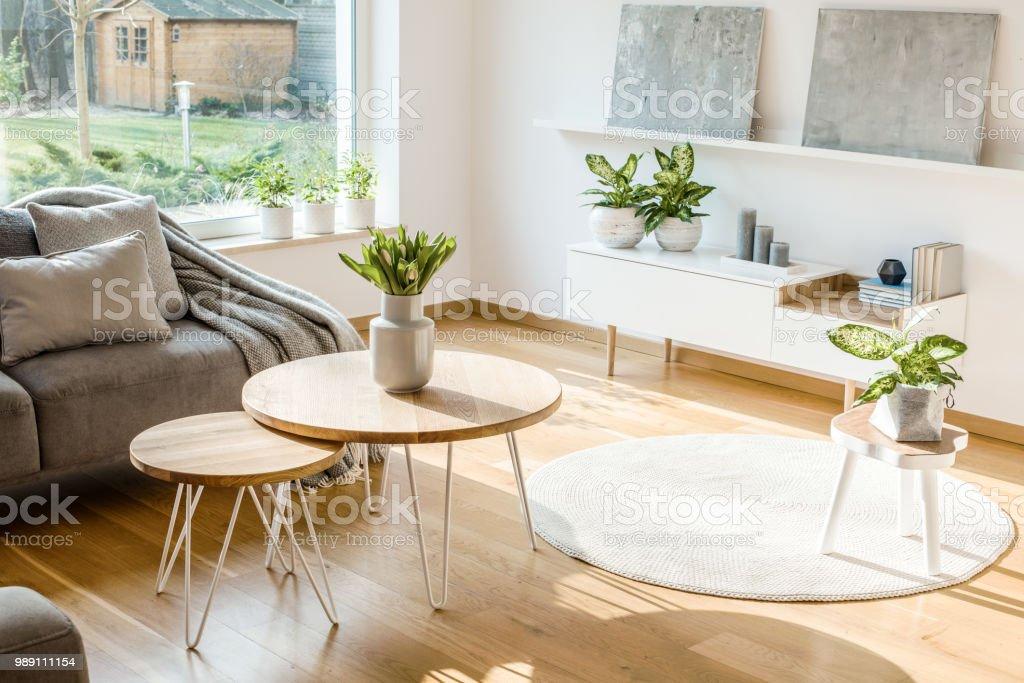 Plantes Fraiches Et Fleurs Salon Lumineux Interieur Avec Des Tables