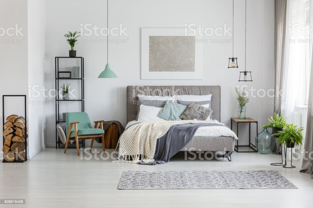 Fresh plants in room stock photo
