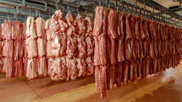 Fresh pork from swine farm stock photo
