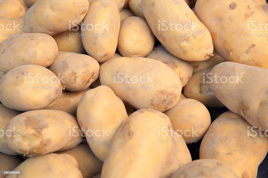 fresh potato selling on vegetable market stock photo