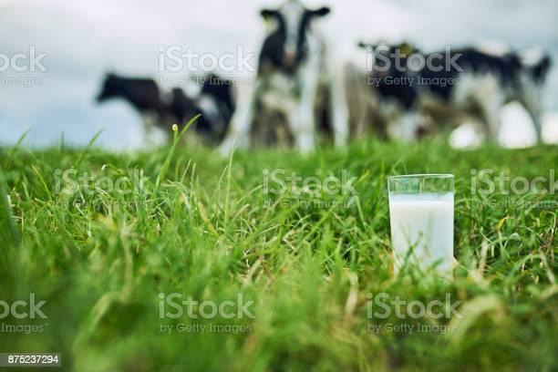 Productos Frescos Foto de stock y más banco de imágenes de Actividad de agricultura