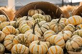 istock Fresh pumpkins 1277619613