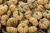 istock Fresh pumpkins 1277619622