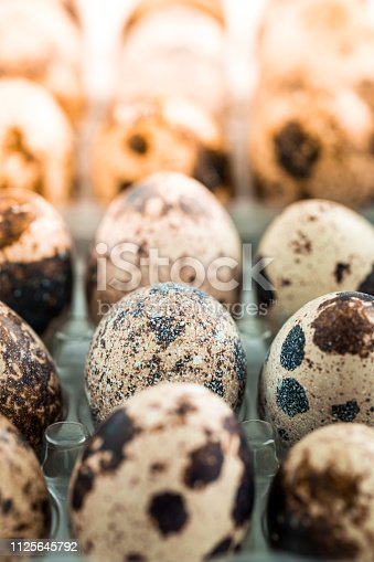 Close up macro color image depicting an arrangement of fresh quail eggs in a row. Room for copy space.