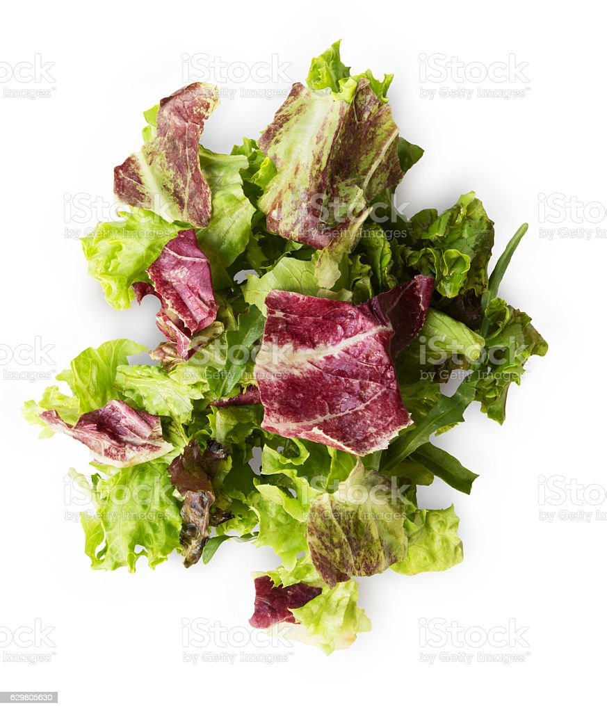 Fresh radicchio and green lettuce mix isolated on white background stock photo