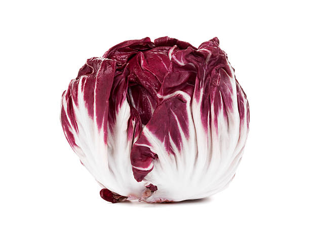 fresh radicchio isolated on white stock photo