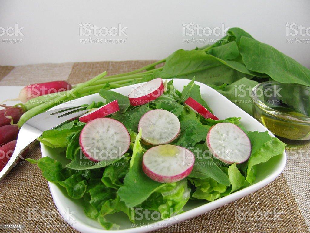 Fresh radish salad stock photo